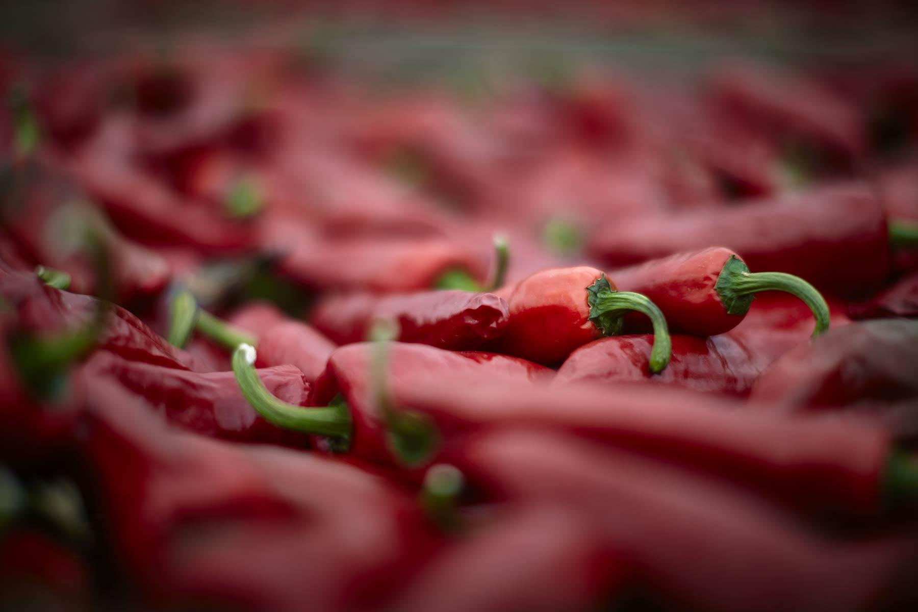 piment-espelette-aop